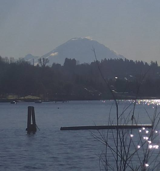 Coulon_Rainier (2)